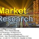 The Top Quality Market Research Service Provider in Bhopal