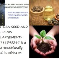 MUTUBA SEED AND OIL PENIS ENLARGEMENT+27781595267