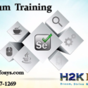 Selenium Online Training Course By H2kinfosys